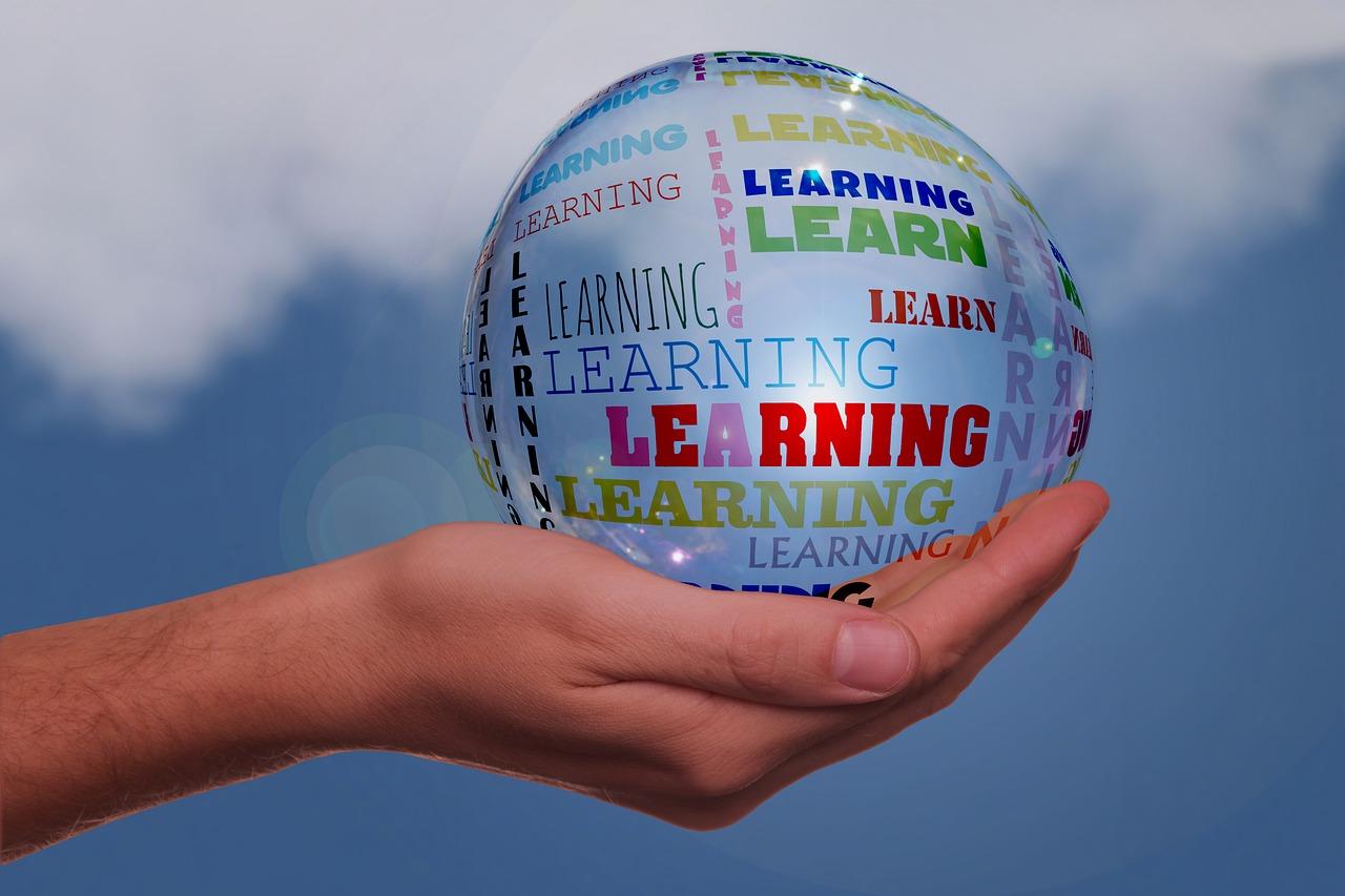 効率的に英文法学習する大人のための教材3選